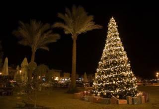 Noel en Egypte
